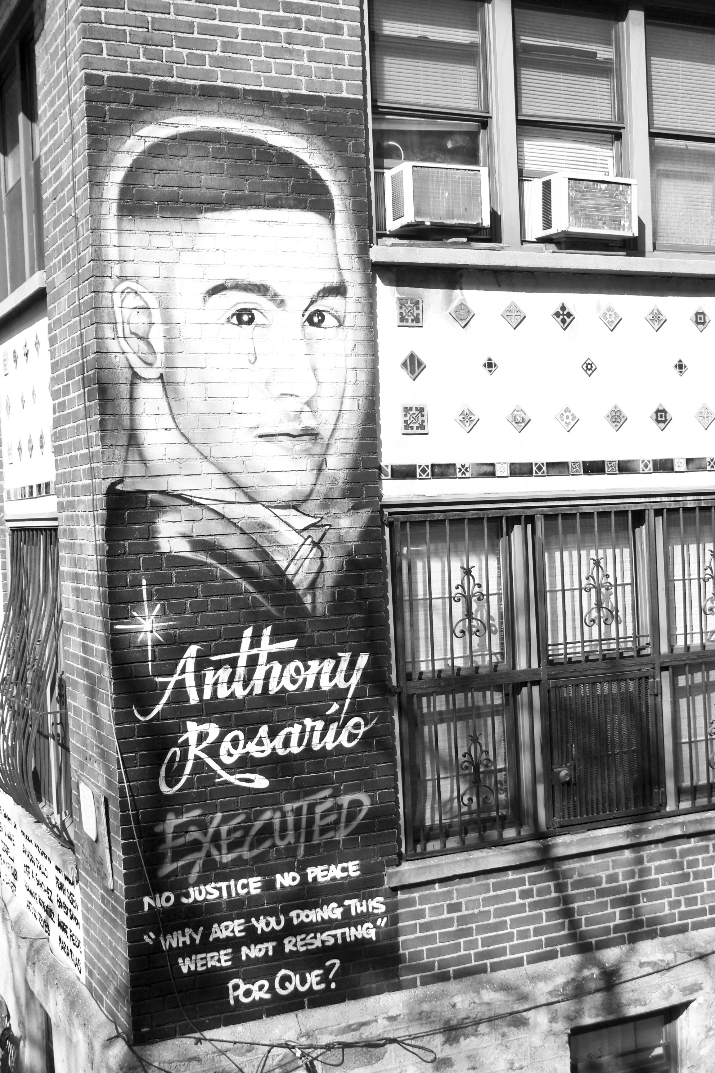 STOLEN LIVES & RESURRECTION : MARGARITA ROSARIO RESURRECTS HER SON ANTHONY BAEZ THROUGH ART PLACED ON THEIR HOME